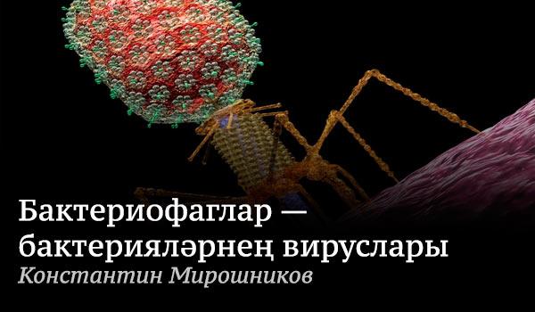 Бактерияләрнең-вируслары
